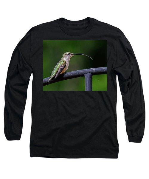 Ruby-throated Hummingbird Tongue Long Sleeve T-Shirt