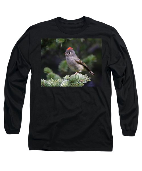 Rubycrowned Kinglet Long Sleeve T-Shirt