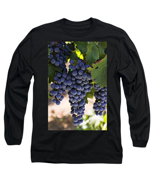 Sauvignon Grapes Long Sleeve T-Shirt