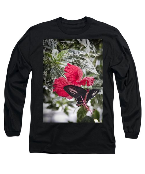 Scarlet Mormom Butterfly On Hibiscus Long Sleeve T-Shirt by Shirley Mitchell