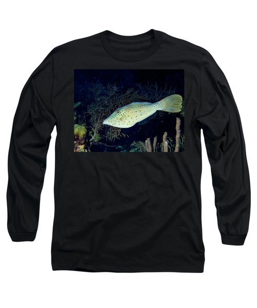 Long Sleeve T-Shirt featuring the photograph Scrawled Filefish by Jean Noren