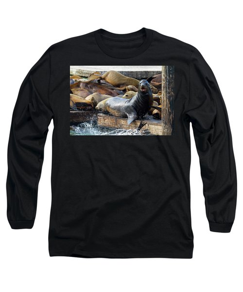 Sea Lions On The Floating Dock In San Francisco Long Sleeve T-Shirt