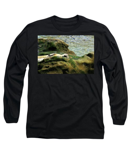 Long Sleeve T-Shirt featuring the photograph Seal On The Rocks by Anthony Jones