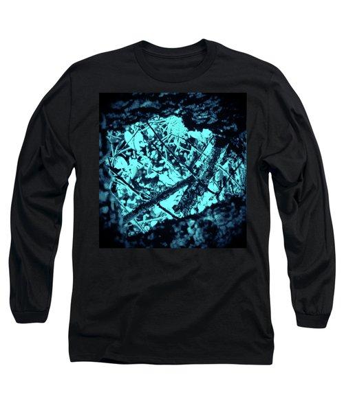 Seeing Through Trees Long Sleeve T-Shirt