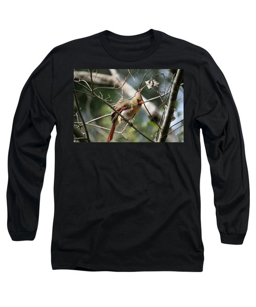 Long Sleeve T-Shirt featuring the photograph Shake It Off by Cathy Harper