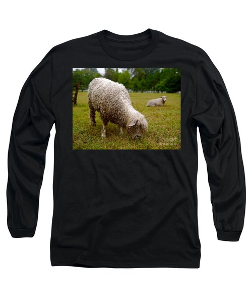 Sheep Begin A New Day Long Sleeve T-Shirt
