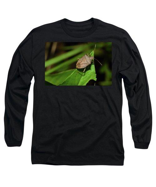 Shield Bug Long Sleeve T-Shirt