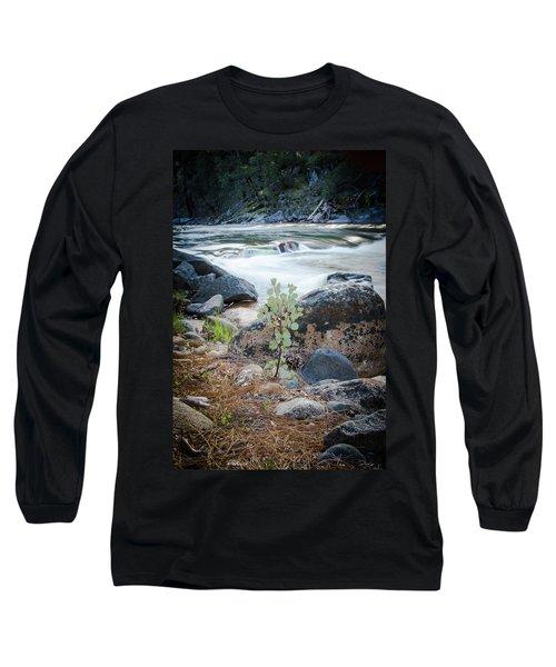 Silver Fork Manzanita Long Sleeve T-Shirt