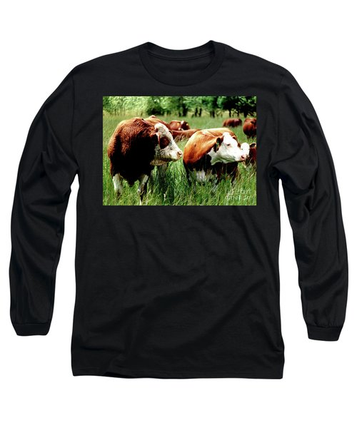 Simmental Bull And Hereford Cow Long Sleeve T-Shirt by Larry Campbell