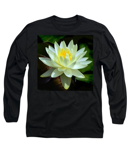 Single Yellow Water Lily Long Sleeve T-Shirt by Kathleen Stephens