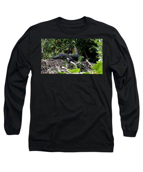 Sleeping Alligator Long Sleeve T-Shirt
