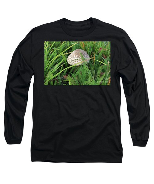 Small Ragged Parasol In The Grass Long Sleeve T-Shirt