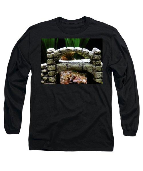 Snail Over A Bridge Long Sleeve T-Shirt