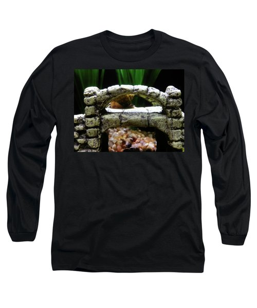 Long Sleeve T-Shirt featuring the photograph Snail Over A Bridge by Robert Knight