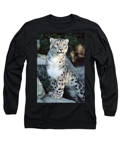 Snow Leopard Uncia Uncia Portrait Long Sleeve T-Shirt