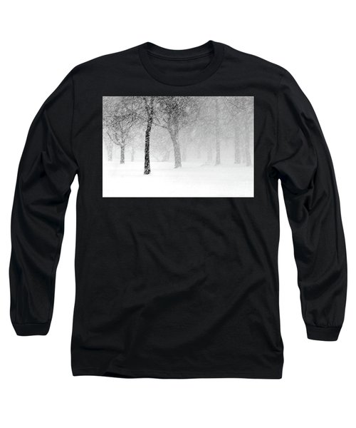 Snow Storm At Starved Rock Long Sleeve T-Shirt