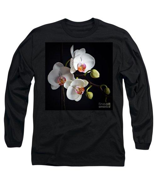 Softly Long Sleeve T-Shirt