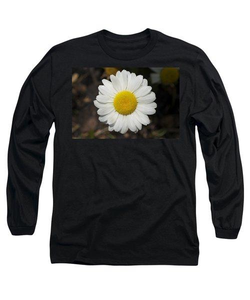 Solo Daisy Long Sleeve T-Shirt by Henri Irizarri