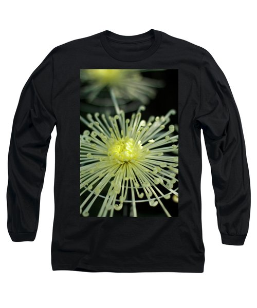 Spiral Chryanth Long Sleeve T-Shirt