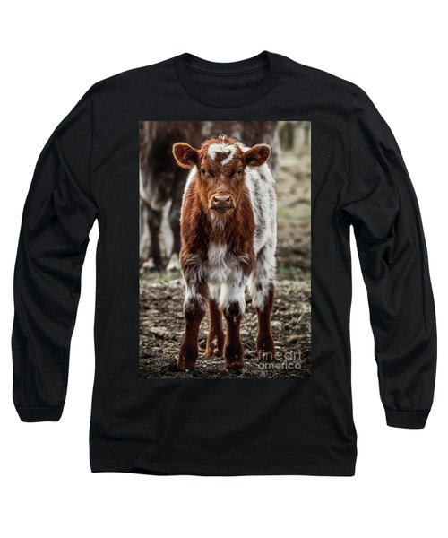 Spring Baby Long Sleeve T-Shirt