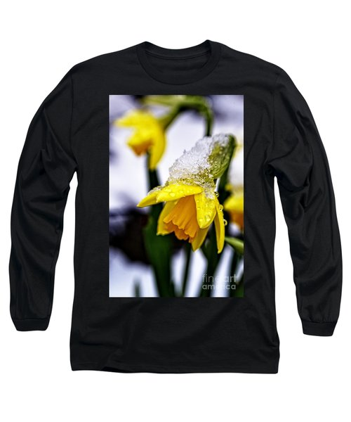 Spring Daffodil Flowers In Snow Long Sleeve T-Shirt