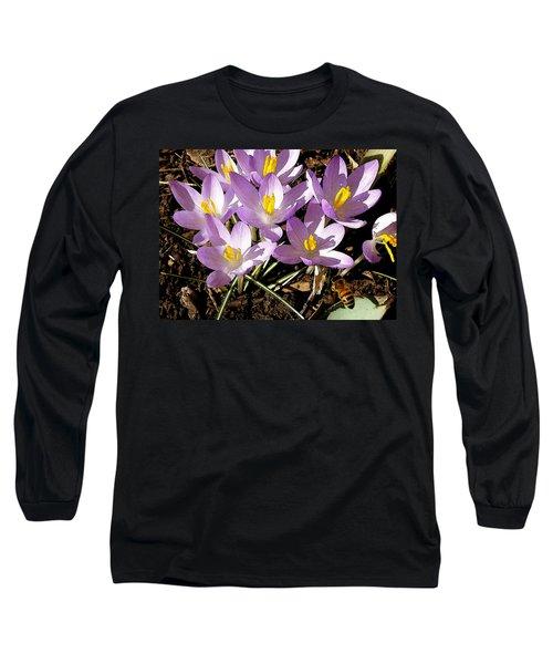 Springtime Crocuses  Long Sleeve T-Shirt