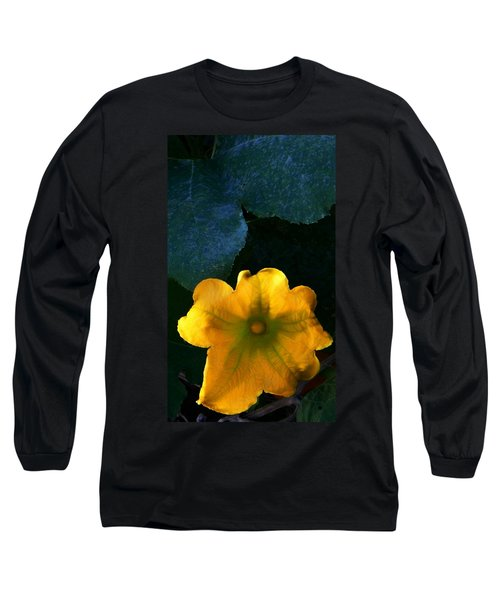 Long Sleeve T-Shirt featuring the photograph Squash Blossom by Lenore Senior