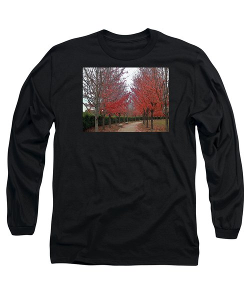 St. Louis, November 2015 Long Sleeve T-Shirt