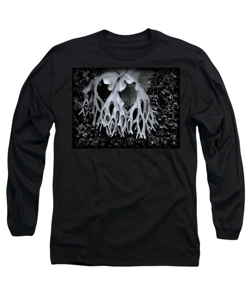 Long Sleeve T-Shirt featuring the photograph Staghorn Fern by Wayne Sherriff