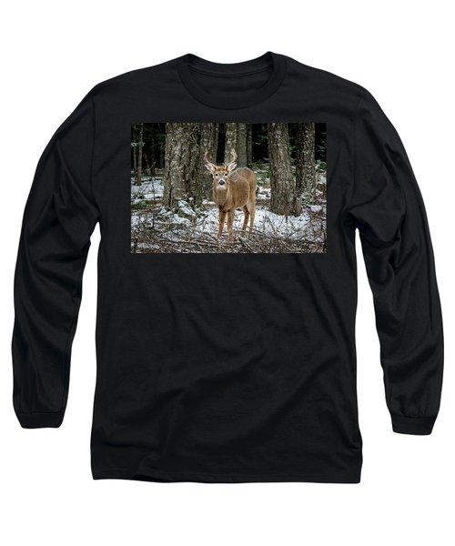 Staring Buck Long Sleeve T-Shirt