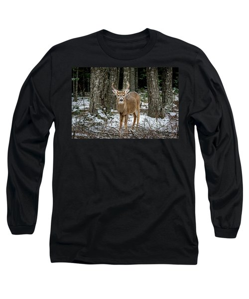 Staring Buck Long Sleeve T-Shirt