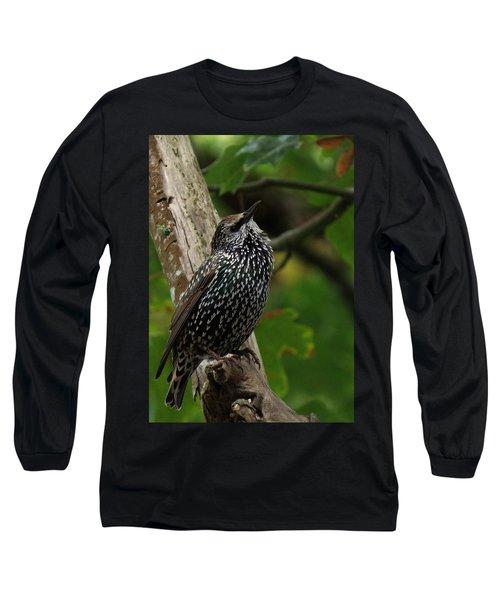 Starling Pride Long Sleeve T-Shirt