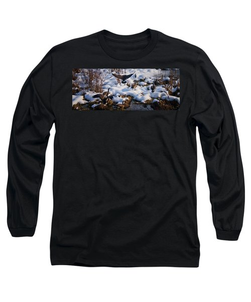 Long Sleeve T-Shirt featuring the photograph Staying Put by Albert Seger