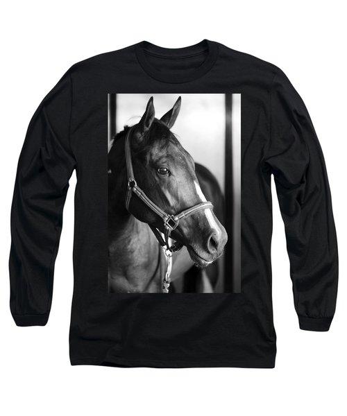 Horse And Stillness Long Sleeve T-Shirt