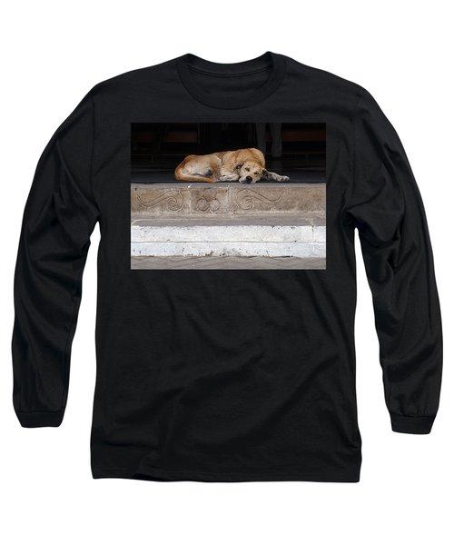 Long Sleeve T-Shirt featuring the photograph Street Dog Sleeping On Steps by Karen Zuk Rosenblatt