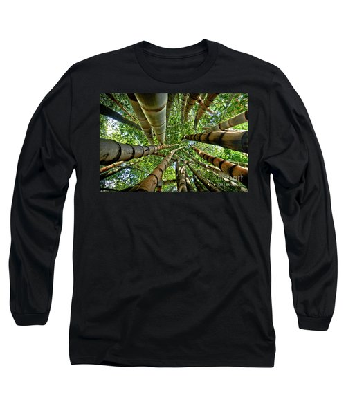 Stunning Bamboo Forest - Color Long Sleeve T-Shirt