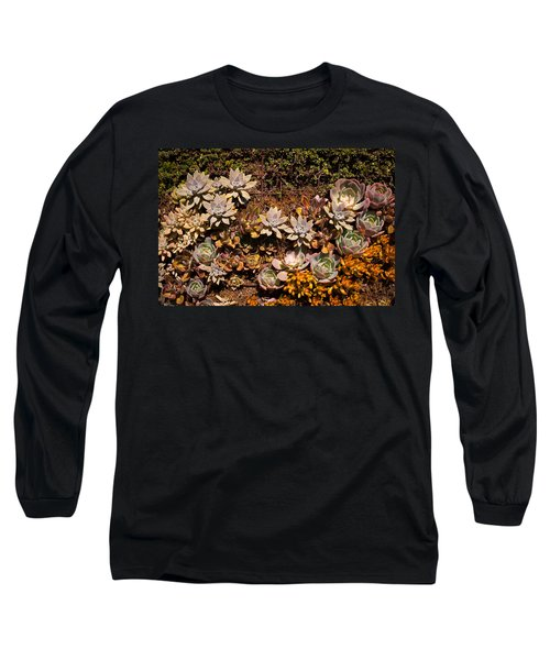 Succulents Vertical Garden Long Sleeve T-Shirt by Catherine Lau