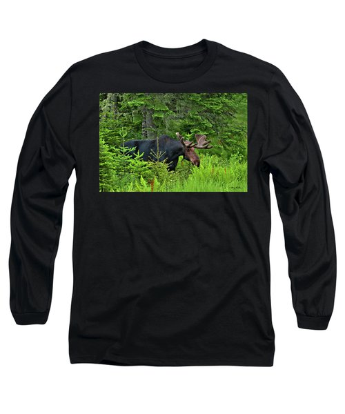 Summer Bull Long Sleeve T-Shirt