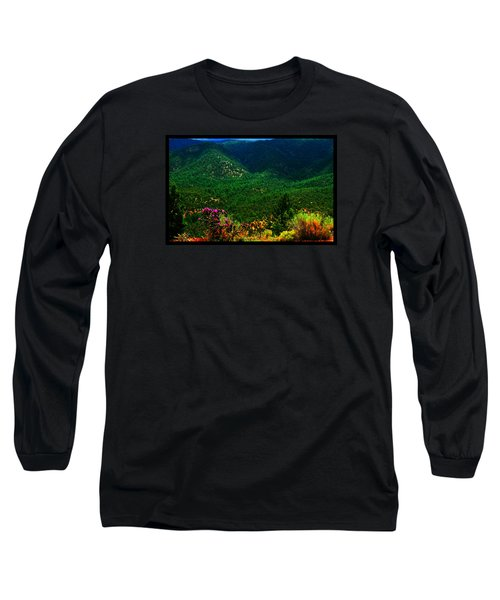 Summer In Upper Pacheco Canyon Long Sleeve T-Shirt by Susanne Still