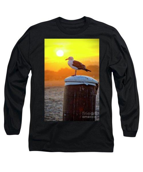 Sun Gull Long Sleeve T-Shirt