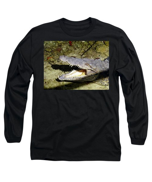 Long Sleeve T-Shirt featuring the photograph Sunbathing Croc by Francesca Mackenney