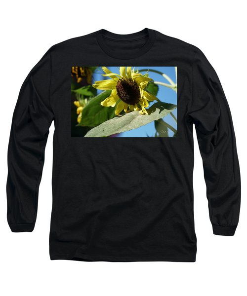 Sunflower, Lemon Queen, With Pollen Long Sleeve T-Shirt
