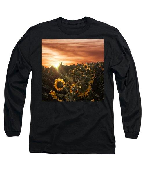 Sunflower Rise Long Sleeve T-Shirt