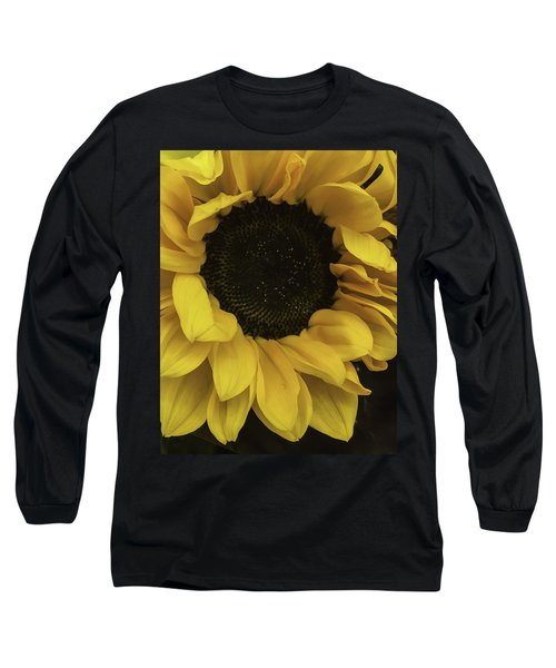 Sunflower Up Close Long Sleeve T-Shirt by Arlene Carmel