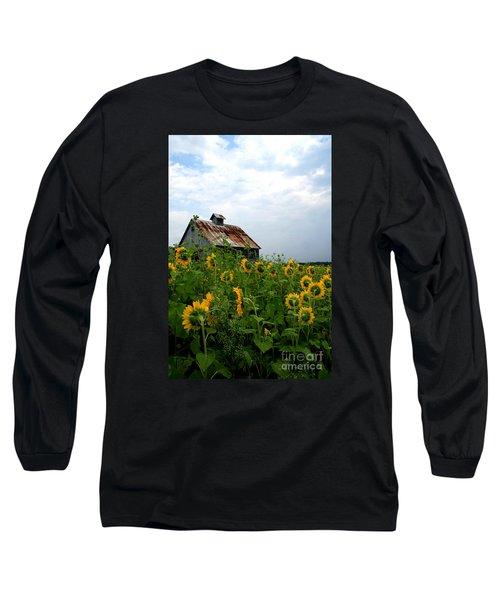 Sunflowers Along Rt 6 Long Sleeve T-Shirt