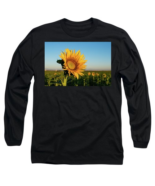 Sunflowers At Sunrise 2 Long Sleeve T-Shirt