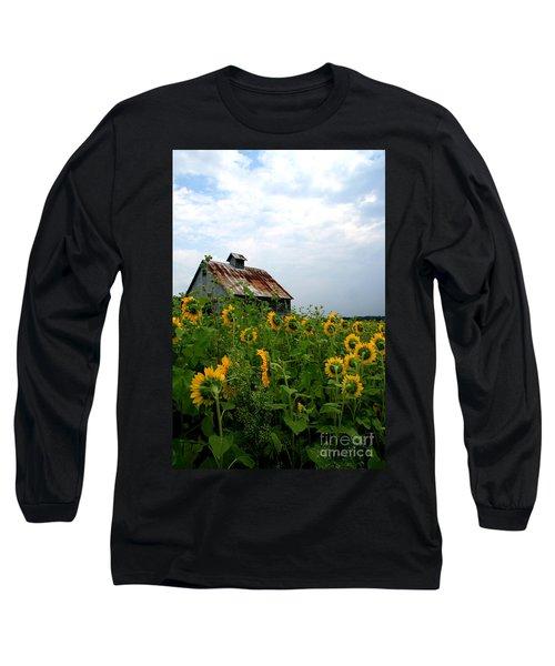 Sunflowers Rt 6 Long Sleeve T-Shirt