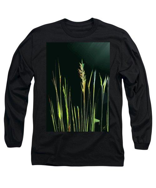 Sunlit Grasses Long Sleeve T-Shirt