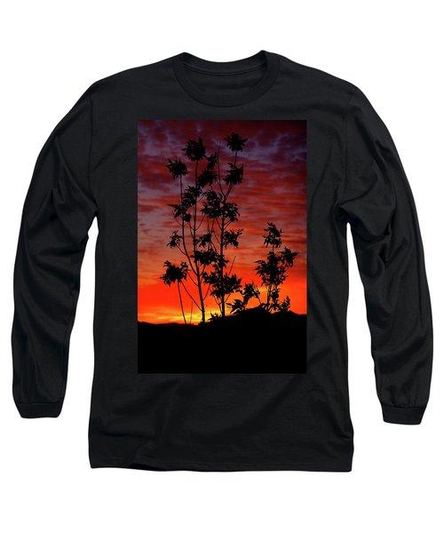 Sunrise Magic Long Sleeve T-Shirt by Paul Marto