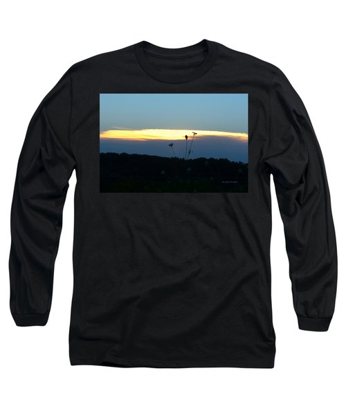 Sunset Gold Stripe Queen Anne Long Sleeve T-Shirt